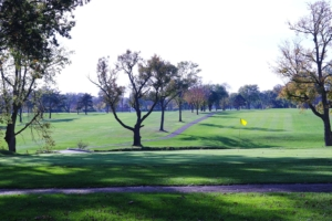 Trail winding through the green grass and slopes of the Donald Ross Golf Course on a beautiful day
