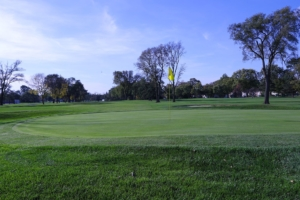 Bright green manicured grass with a hole and yellow flag on the course in the Donald Ross Golf Club
